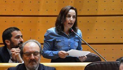 El PSOE propone fomentar la competitividad en Canarias y apostar por la economía verde y la I+D+i