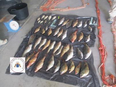 Agentes de Medio Ambiente denuncian a diez pescadores furtivos