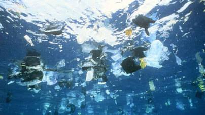 Investigadores de la ULPGC alertan sobre la contaminación por microplásticos en Canarias
