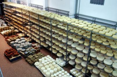Gran Canaria alberga el mayor centro de maduración de quesos artesanales de España