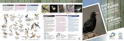 El Cabildo de La Palma y SEO/BirdLife ponen en marcha una campaña para la divulgación y protección de las aves de isla