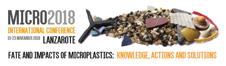 Lanzarote acoje la Conferencia Internacional Micro2018 sobre los microplásticos