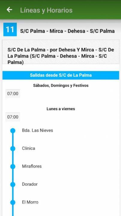 Una nueva 'app' acerca la información sobre el servicio de transporte público en guagua en La Palma