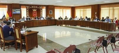 El Pleno del Cabildo instará al Gobierno a paralizar el inicio de las obras previstas por REE