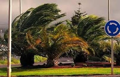 Canarias en alerta por calor... y fuertes rachas de viento