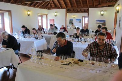 En torno a 80 vinos se medirán en los concursos local y regional de Los Realejos