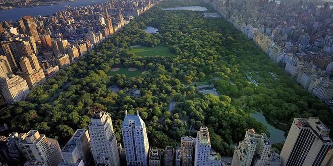 Nueva York se prepara para crear fosas comunes en parques públicos
