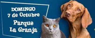 """Más de 40 actividades el fin de semana del IX Día de los Animales y """"Ven a Santa Cruz"""""""