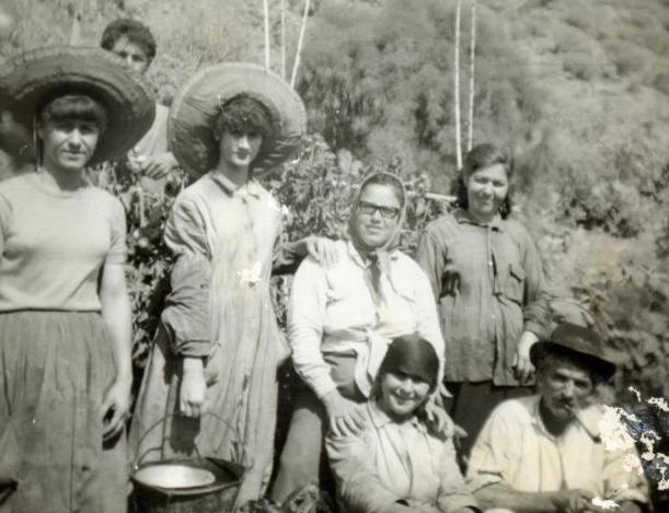 El Archivo de Fotografía Histórica del Cabildo duplica su fondo digitalizado