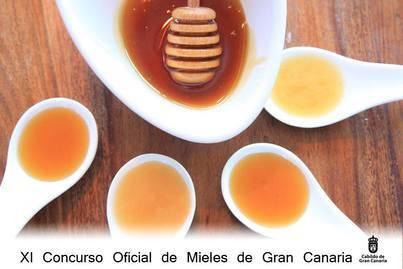 Gran Canaria busca su Mejor Miel de 2016