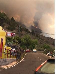 Declarado un incendio forestal en El Paso