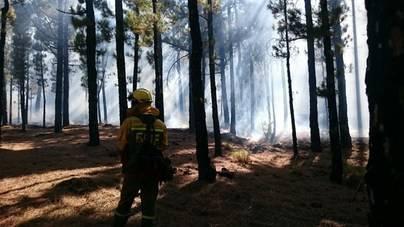 Estabilizado el incendio de La Palma y los vecinos desalojados pueden volver a sus casas