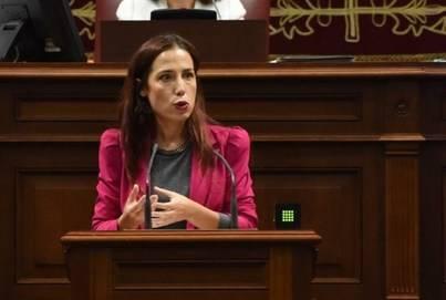 Empleo presenta proyectos por 48 millones al Fondo de Desarrollo de Canarias