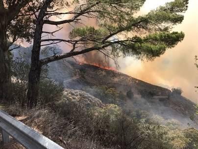 El Seprona inicia los trabajos para esclarecer el origen del fuego en Gran Canaria
