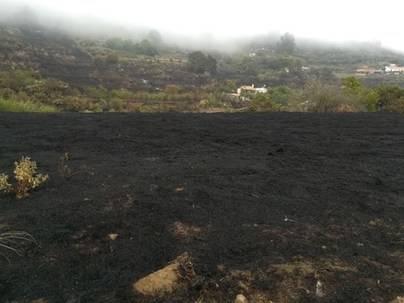 Estabilizado el incendio que afecta a la cumbre de Gran Canaria