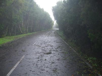 Amplíada la alerta por fuertes vientos a cumbres de La Palma