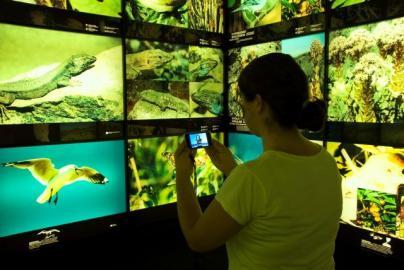 El Museo de la Naturaleza y el Hombre de Tenerife renueva su accesibilidad universal