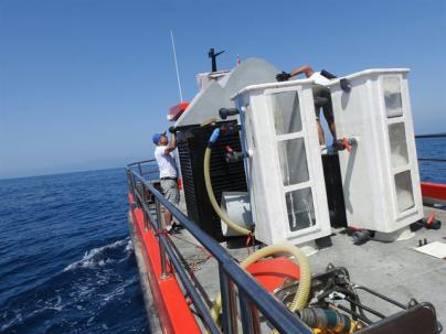 Detectan varias manchas de microalgas en El Hierro, La Palma y Tenerife