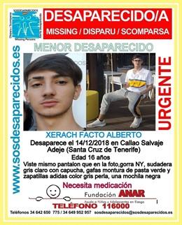 Buscan a un joven de 16 años desaparecido en Adeje