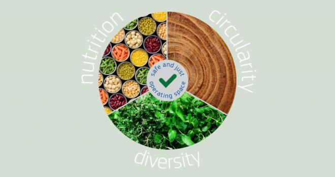 Un informe insta a reformar los sistemas alimentarios para impulsar la recuperación de la COVID-19