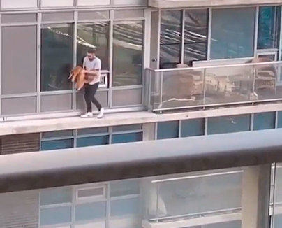 Camina por la cornisa de un sexto piso para recuperar a su gato