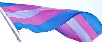 Podemos apoya las reivindicaciones de las personas trans y género-diversas en el Día de Internacional de la Memoria Trans