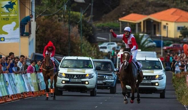 Seis caballos se juegan el acceso a las semifinales de distancia del Campeonato Insular