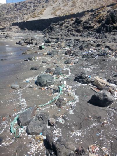La ULPGC participa en un estudio científico que revela contaminación por plásticos en 8 playas de Tenerife