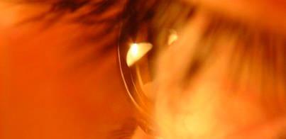 El ojo también tiene células madre