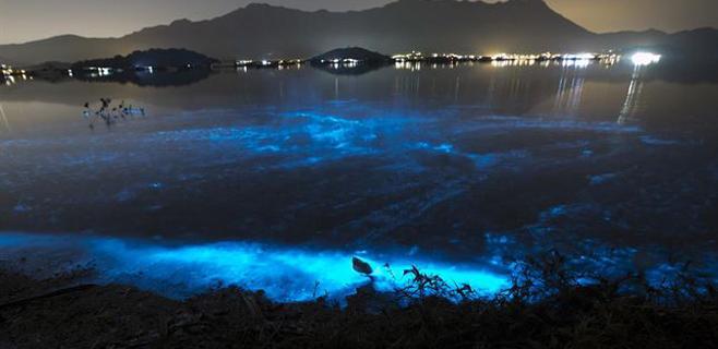 El mar se vuelve azul en Hong Kong