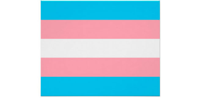 Ayuntamiento de Las Palmas es el primero en izar la bandera trans