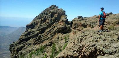 Julio registra un aumento de las sociedades mercantiles en Canarias